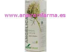 Extracto Angélica 50ml Soria Natural